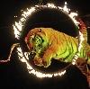 Цирки в Шербакуле